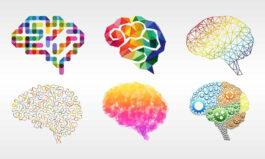 افزونه وردپرس ساخت تست شخصیت شناسی
